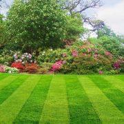 AERATOR - provzdušňovač trávy