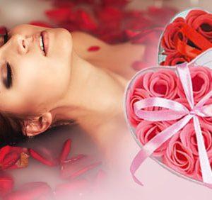 Romantické okvětní lístky růže - Růžová